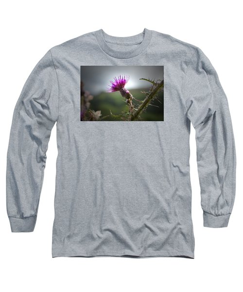 Morning Purple Thistle. Long Sleeve T-Shirt by Terence Davis