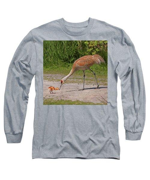 Mother Sandhill Crane Feeding Baby Long Sleeve T-Shirt