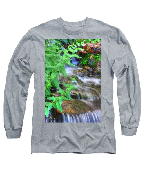 Mountain Bluebells Long Sleeve T-Shirt by Utah Images