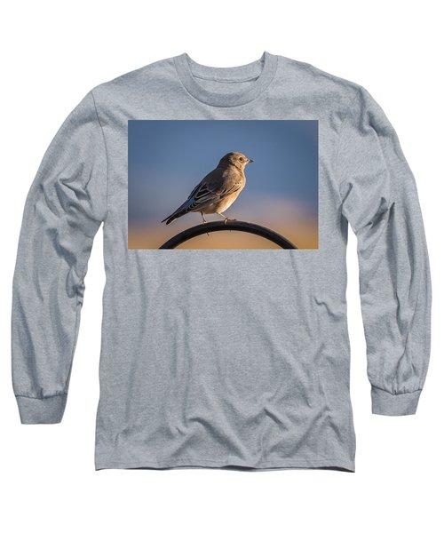 Mountain Bluebird At Sunset Long Sleeve T-Shirt by John Brink