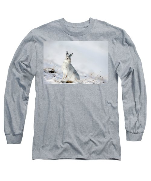 Mountain Hare Sitting In Snow Long Sleeve T-Shirt