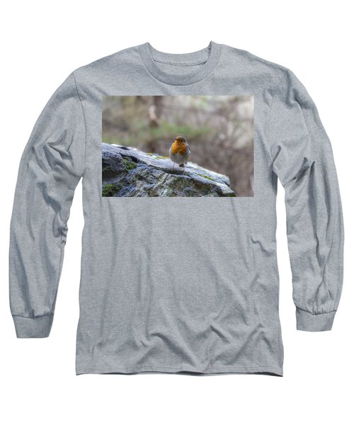 Mountain Robin Long Sleeve T-Shirt