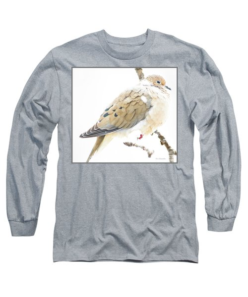 Mourning Dove, Snowy Morning Long Sleeve T-Shirt by A Gurmankin
