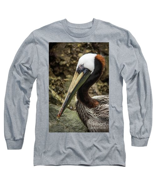 Mr. Cool Wildlife Art By Kaylyn Franks Long Sleeve T-Shirt