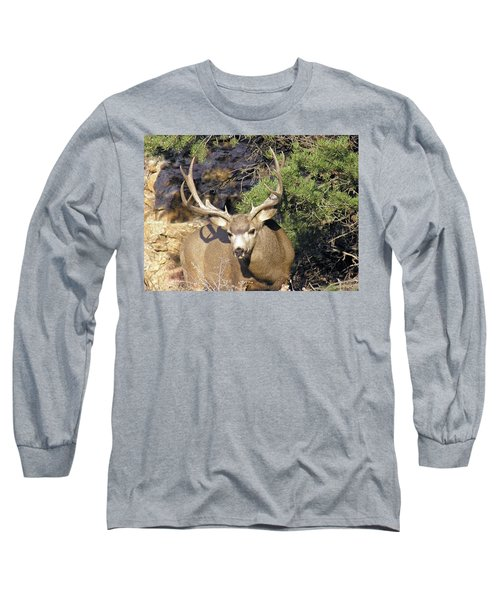 Muledeerbuck6 Long Sleeve T-Shirt
