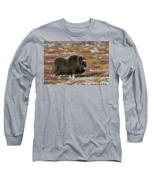 Muskox Long Sleeve T-Shirt