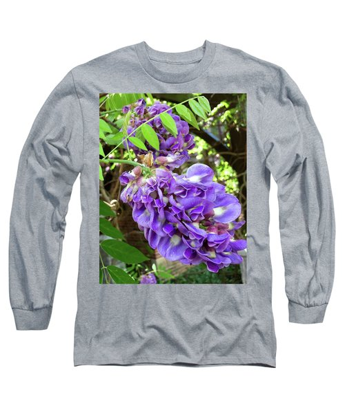Native Wisteria Vine II Long Sleeve T-Shirt