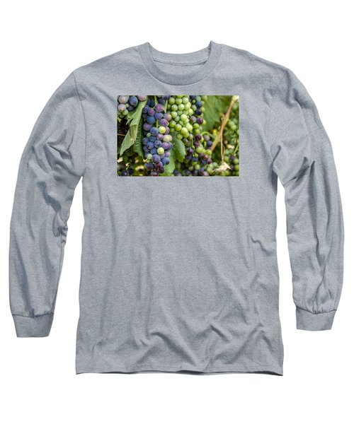 Natures Colors In Wine Grapes Long Sleeve T-Shirt