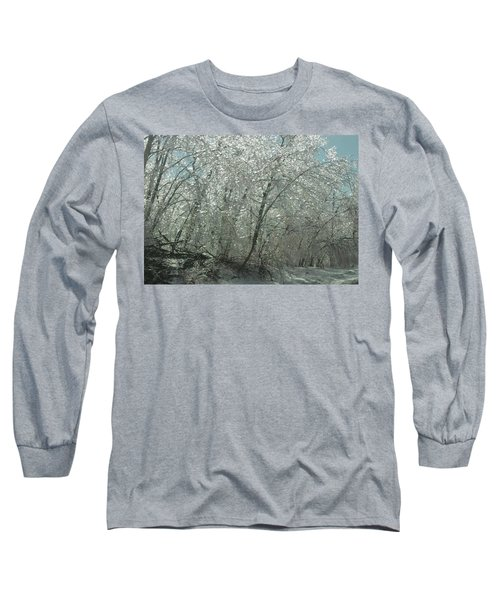 Long Sleeve T-Shirt featuring the photograph Nature's Frosting by Ellen Levinson