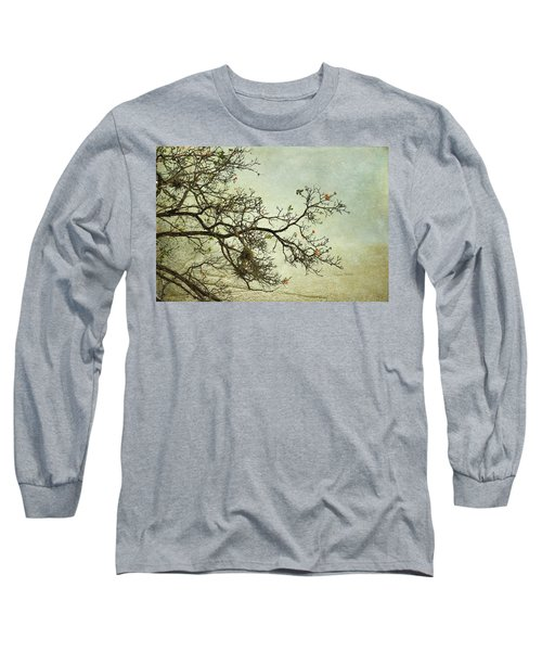 Nearly Bare Branches Long Sleeve T-Shirt