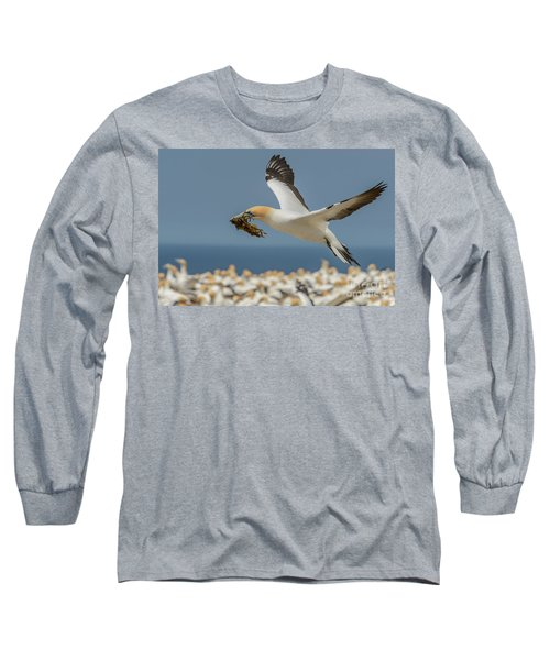 Long Sleeve T-Shirt featuring the photograph Nest Building by Werner Padarin