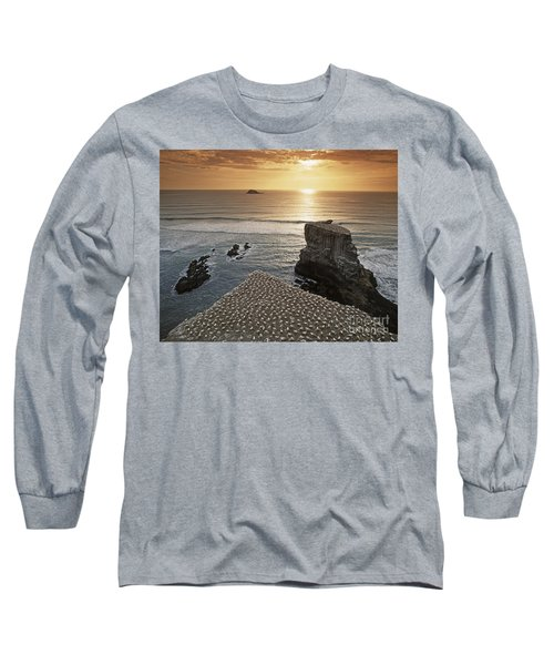 Long Sleeve T-Shirt featuring the photograph new zealand gannet colony at muriwai beach ,gannet fly from Muri by Juergen Held