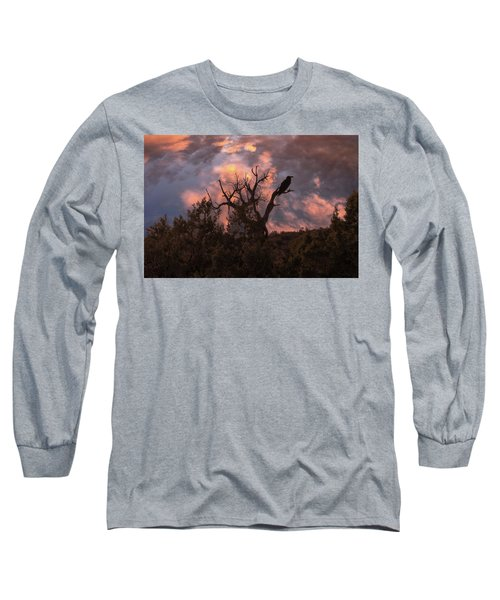 Night Of The Raven Long Sleeve T-Shirt