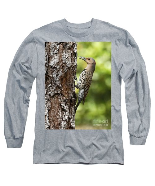 Northern Flicker On The Hunt Long Sleeve T-Shirt