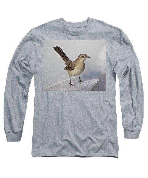 Northern Mockingbird Long Sleeve T-Shirt
