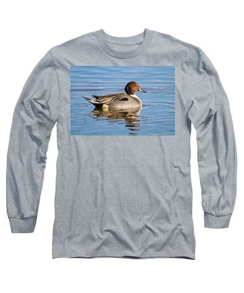 Northern Pintail Duck Long Sleeve T-Shirt