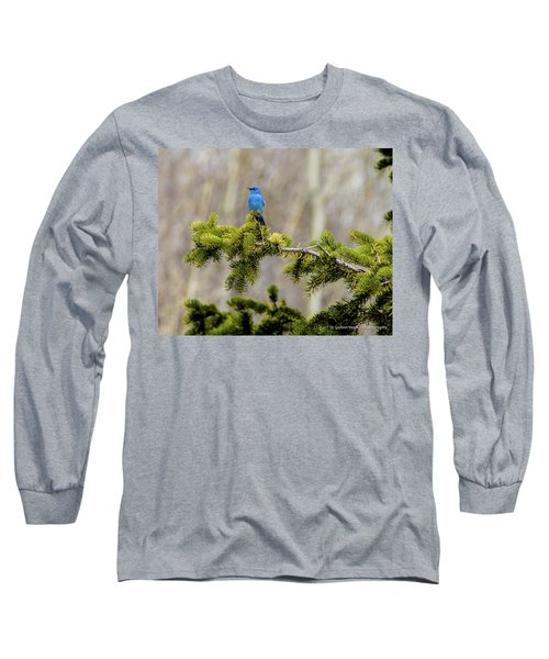 Notice The Pretty Bluebird Long Sleeve T-Shirt