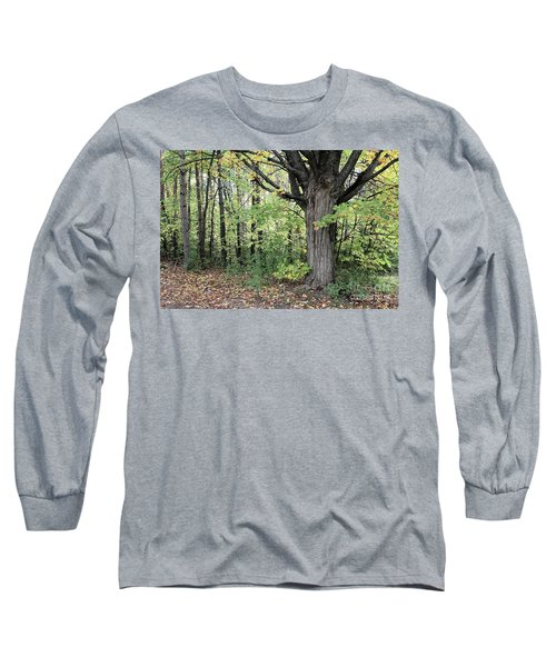 October Trees Long Sleeve T-Shirt