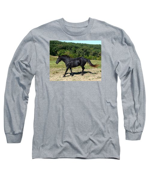 Old Black Horse Running Long Sleeve T-Shirt by Jana Russon