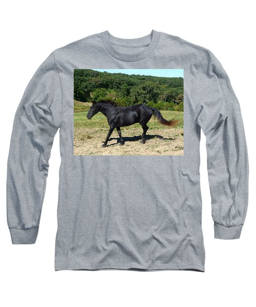 Old Black Horse Running Long Sleeve T-Shirt