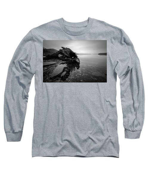 Old Driftwood Long Sleeve T-Shirt