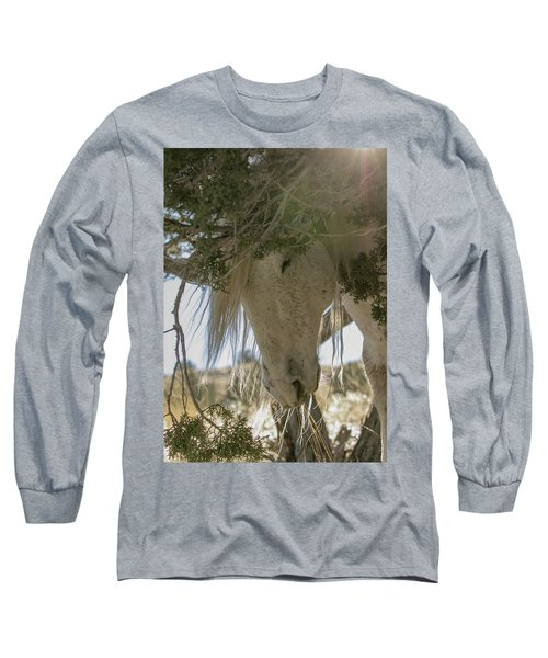 Old Man And The Juniper Long Sleeve T-Shirt