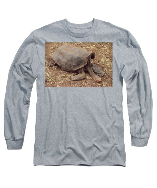Old Tortoise Long Sleeve T-Shirt by Will Burlingham