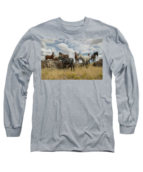 On The Mountain Top Long Sleeve T-Shirt