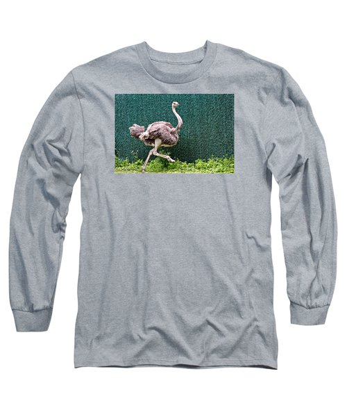 On The Run Long Sleeve T-Shirt by Debra     Vatalaro