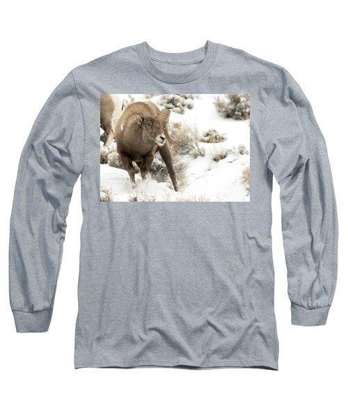 One Tough Guy Long Sleeve T-Shirt