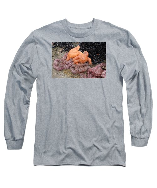 Orange And Purple Starfish Long Sleeve T-Shirt by Chuck Flewelling