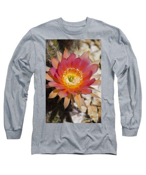 Orange Cactus Flower Long Sleeve T-Shirt