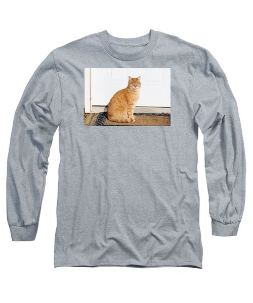 Orange Tabby Cat Long Sleeve T-Shirt by Jana Russon