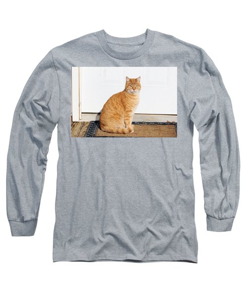 Orange Tabby Cat Long Sleeve T-Shirt