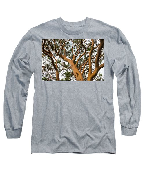 Pacific Madrone Trees Long Sleeve T-Shirt