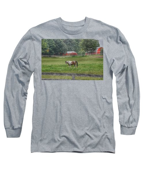 1005 - Painted Pony In Pasture Long Sleeve T-Shirt
