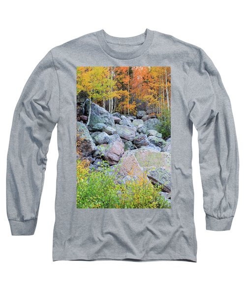 Painted Rocks Long Sleeve T-Shirt by David Chandler