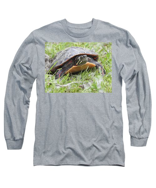 Painted Turtle Long Sleeve T-Shirt by Betty-Anne McDonald