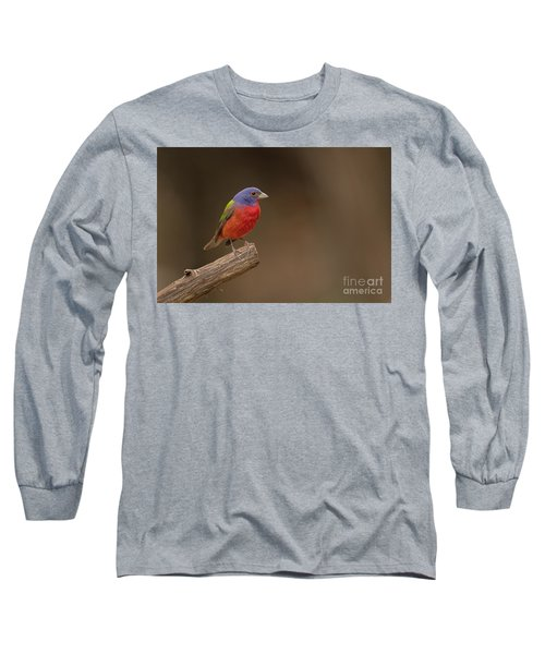 Painting The Hill Country Long Sleeve T-Shirt