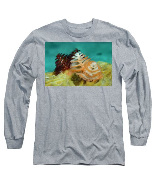 Long Sleeve T-Shirt featuring the photograph Pair Of Christmas Tree Worms by Jean Noren
