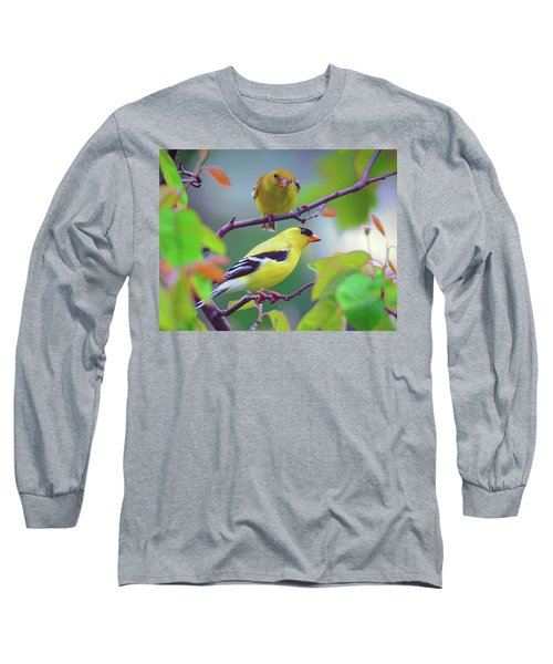 Pair Of Goldfinches Long Sleeve T-Shirt by Rodney Campbell