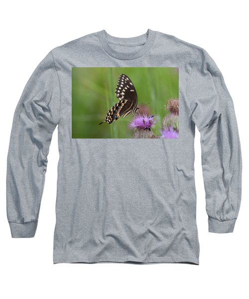 Palamedes Swallowtail And Friends Long Sleeve T-Shirt