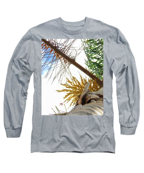 Palm Sky View Long Sleeve T-Shirt by Linda Hollis