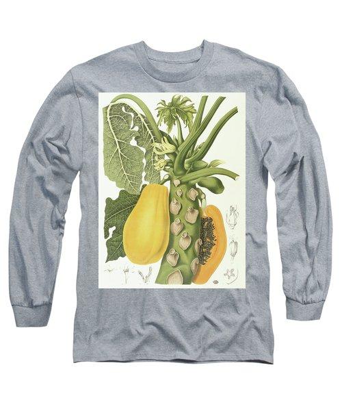 Papaya Long Sleeve T-Shirt by Berthe Hoola van Nooten