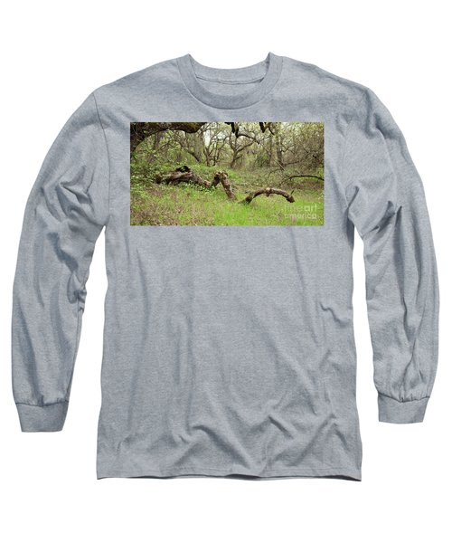 Park Serpent Long Sleeve T-Shirt by Carol Lynn Coronios