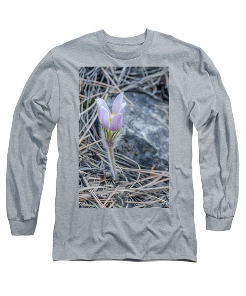 Pasque On The Rocks Long Sleeve T-Shirt