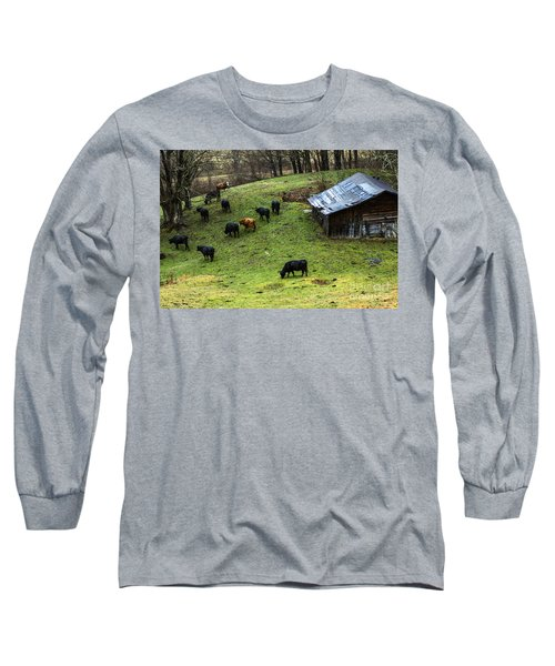 Pasture Field And Cattle Long Sleeve T-Shirt by Thomas R Fletcher