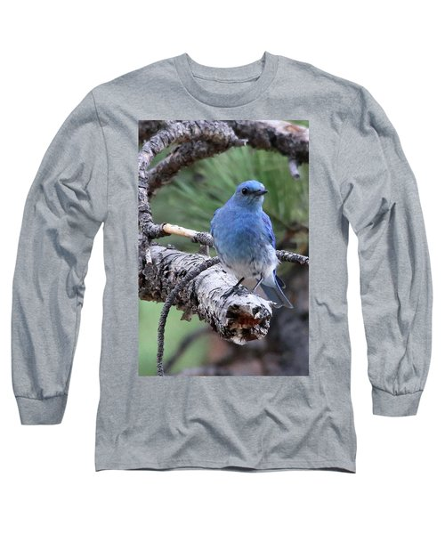 Paying Attention Long Sleeve T-Shirt