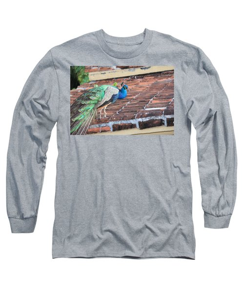 Peacock On Rooftop Long Sleeve T-Shirt
