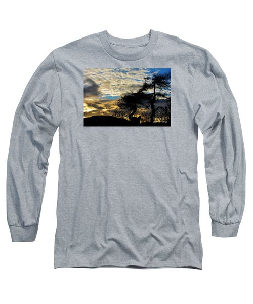 Pebbles Beach Pine Tree Long Sleeve T-Shirt by Elaine Hunter